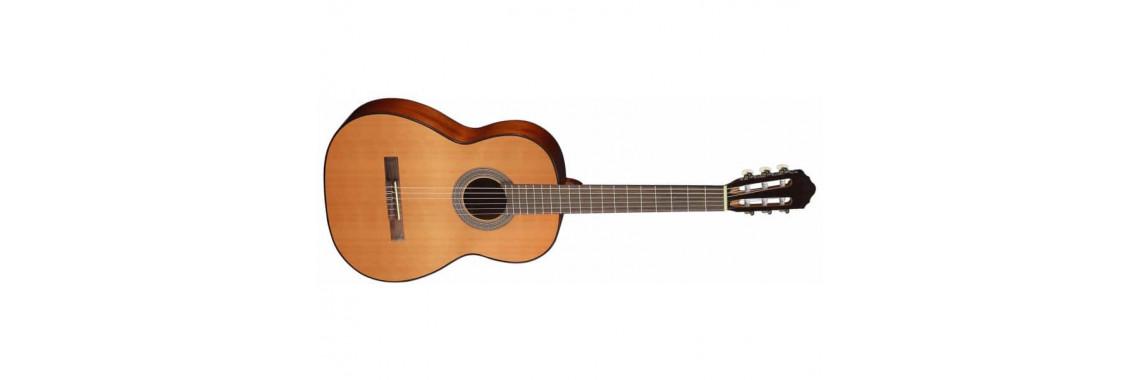 Гитара классическая CORT AC100 SG